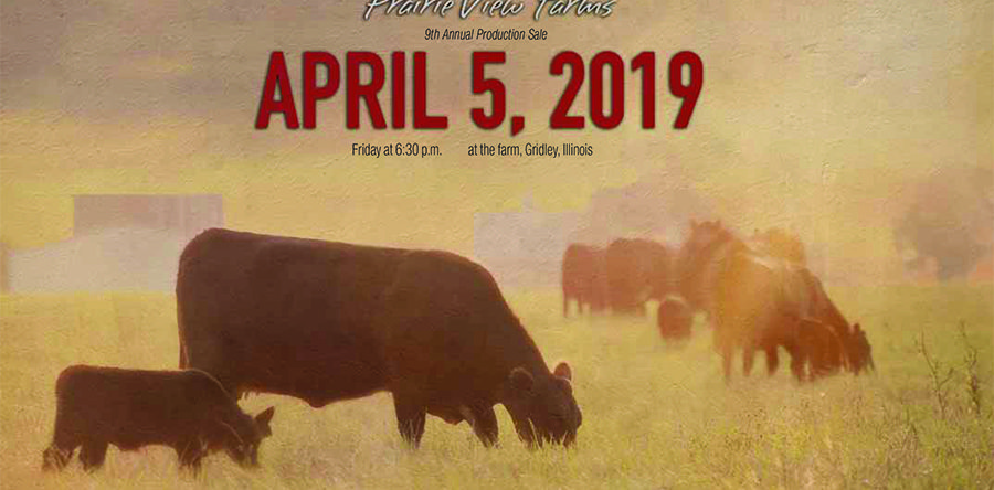 9th Annual Production Sale