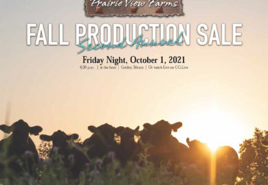 2021 Fall Production Sale Catalog NOW POSTED!